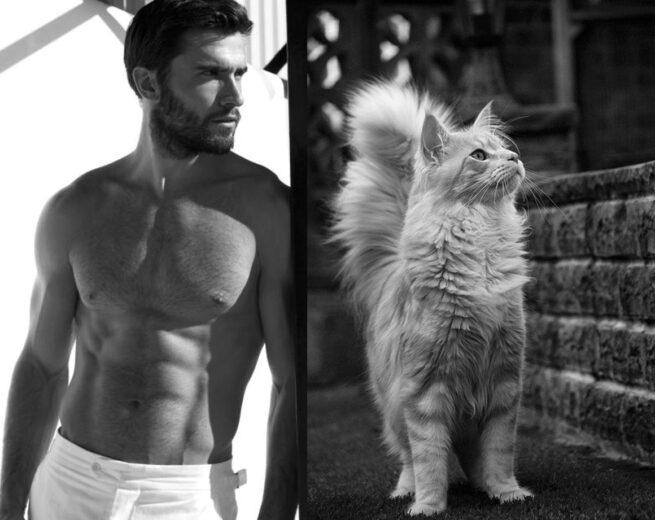 Faceci i koty6