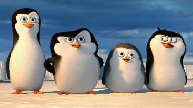 Pingwiny z Madagaskaru - Pingwiny z Antarktydy