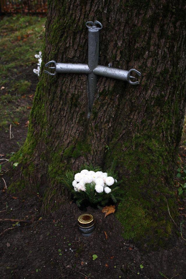 Drzewa pochłaniające przedmioty 2
