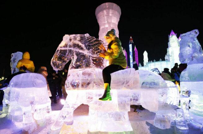 Festiwal Lodu i Śniegu 16