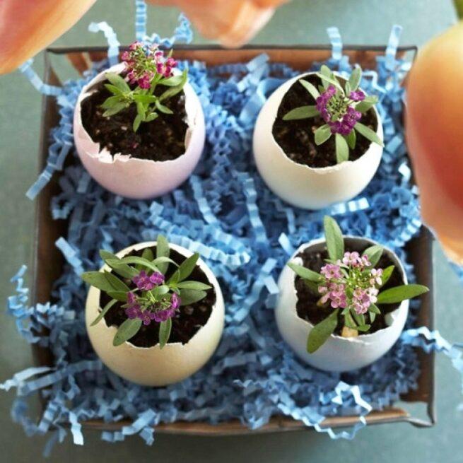 Wielkanocne wazoniki ze skorupek jaj 16