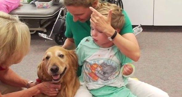 terapia z udzialem psa