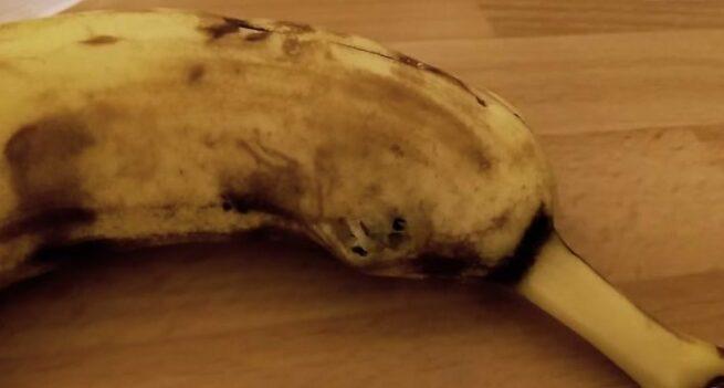 pajak w bananie