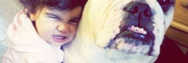 dzieci i psy
