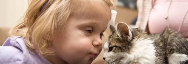 dziewczynka i kotek