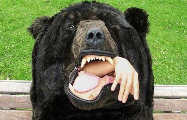 piżama niedźwiedź 3